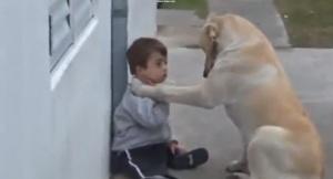 Terapia con perros para personas con síndrome de Down